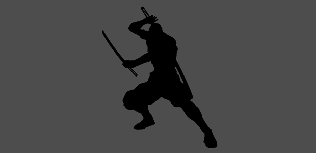 The ninja approach to startup succeess