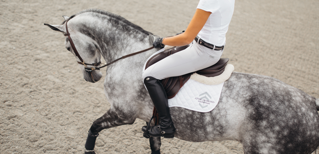 Unbridled success for equestrian-athleisure startup