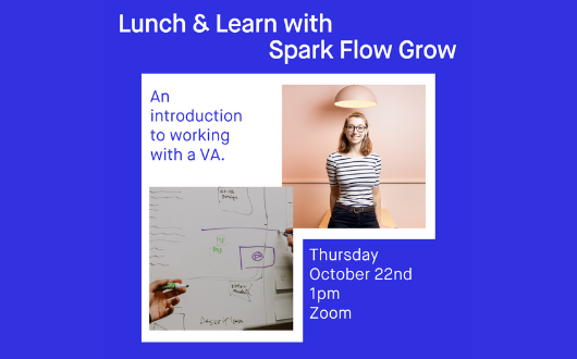 An introduction to working with a VA with Spark Flow Grow.
